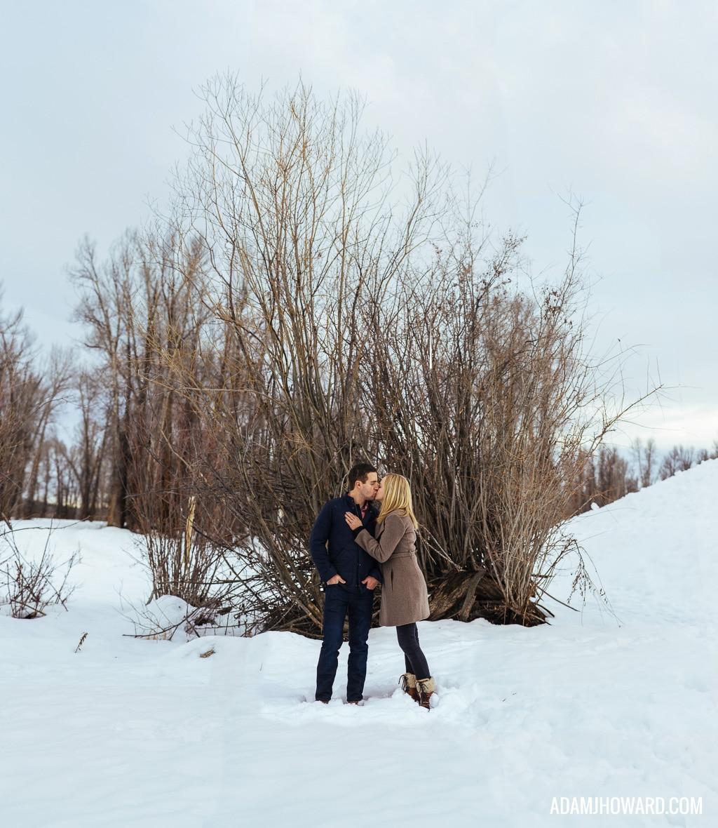 Brenizer Method, Bokeh Panorama, Snow Engagement Session